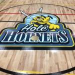 Lois E Hole gym logo